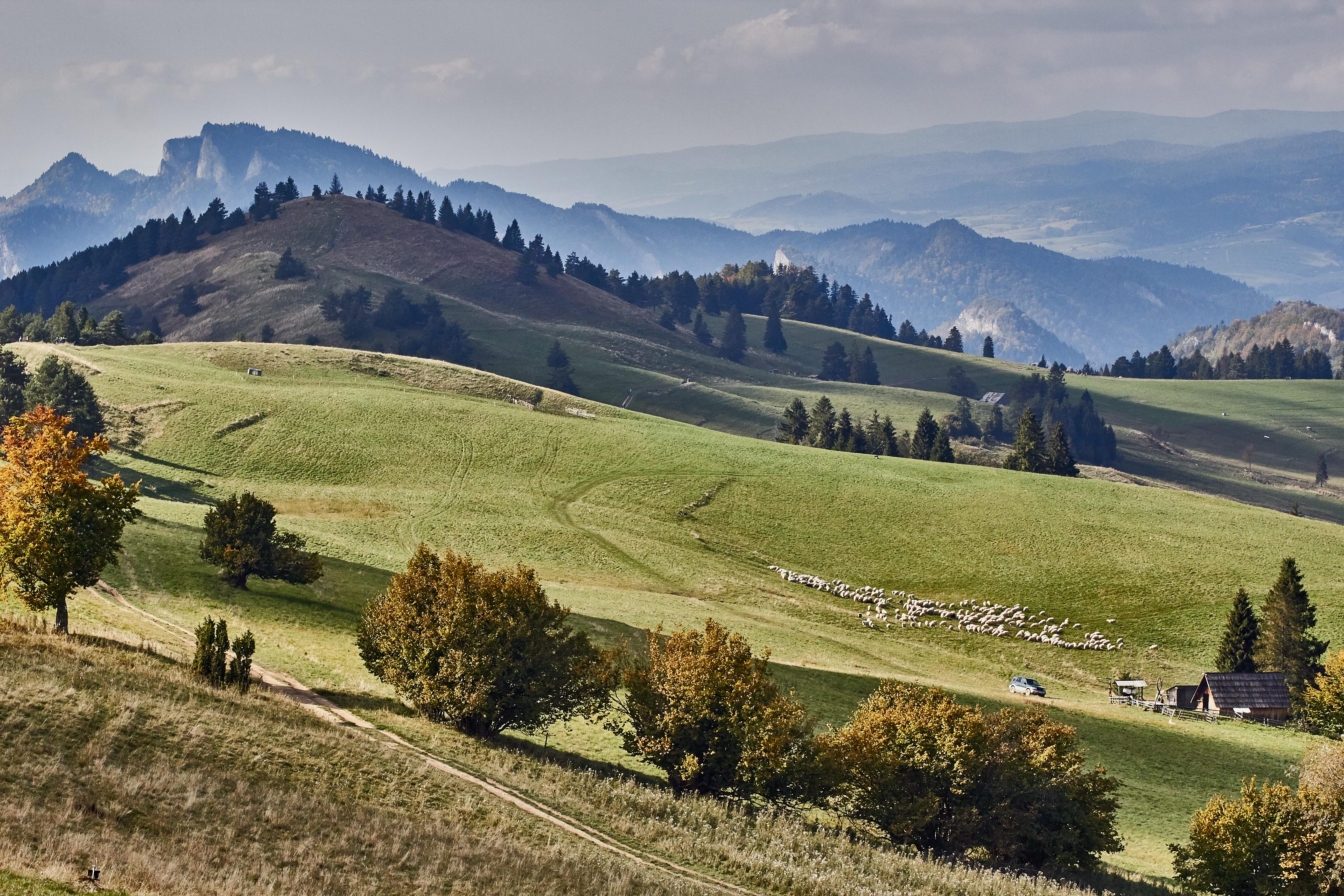 naturalne zdjęcia krajobrazu